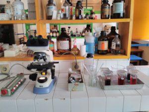 analisa-sperma-3
